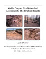 Waldo Canyon Fire Watershed Assessment: The WARSSS Results